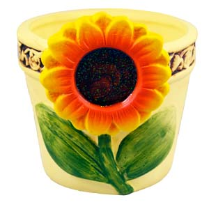 Ceramic Planter Pot