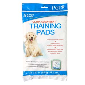 Convenience Store Item - Training Pads