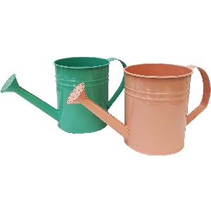 Spring Watering Can